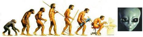 Evolucao